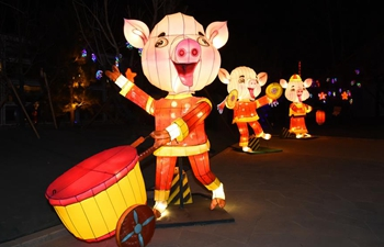 Fancy lanterns displayed across China during Spring Festival