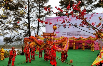 Peach blossom held in China's Guangxi to celebrate coming of spring