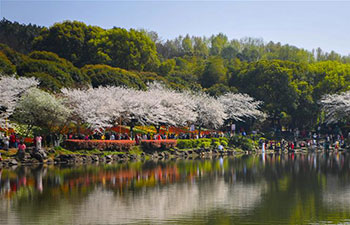 Tourists view cherry blossoms in central China