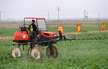 Spring ploughing underway in east China's Jiangxi