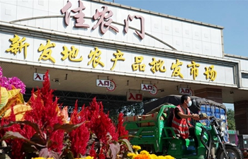 Xinfadi wholesale market resumes in Beijing