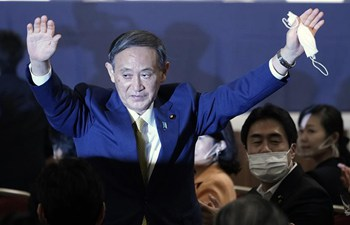 Suga elected president of Japan's ruling LDP to succeed Abe