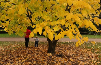 People enjoy autumn colours at Westonbirt in Britain