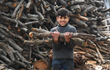Syrian people store up firewood against cold weather