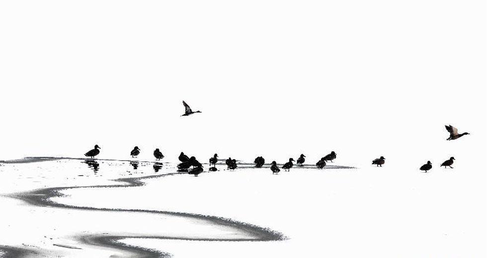 雲南納帕海雪景如畫