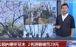 北京:公園內攀折花木 2名遊客被罰20元