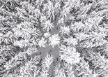 航拍波兰冰雪世界 冰天雪地里的空灵之美