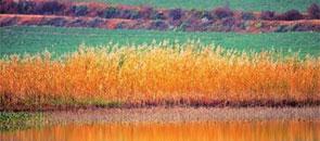 云南新增八处湿地 自然景观各具特色
