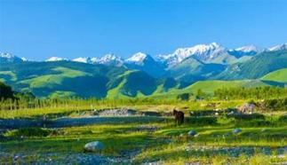 新疆推出丰富多彩的旅游产品线路,推进全域旅游发展