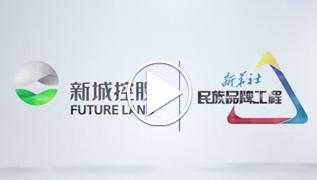 新城控股:進化ING