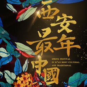 """""""西安年·最中国""""新华网全球首播视频合集"""