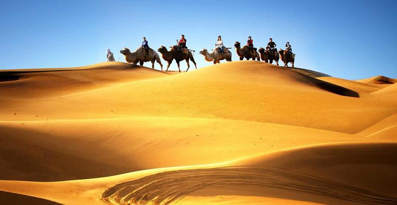 遊客乘駱駝體驗沙漠風情