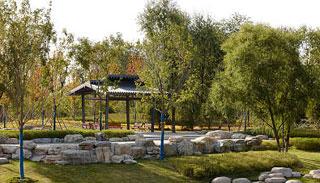 今年北京將增綠20萬畝 再添41處城市休閑公園