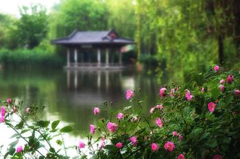 """【""""疫""""後花開 邁向詩和遠方】天下第一泉景區:泉湖河城匯大美"""