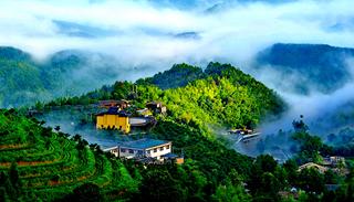 """【""""疫""""後花開 邁向詩和遠方】虔心小鎮:茶旅結合的生態旅遊特色小鎮"""
