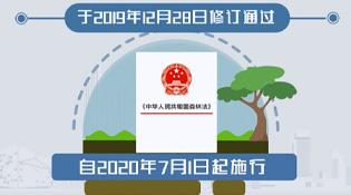 新新修訂的《森林法》7月1日起實施