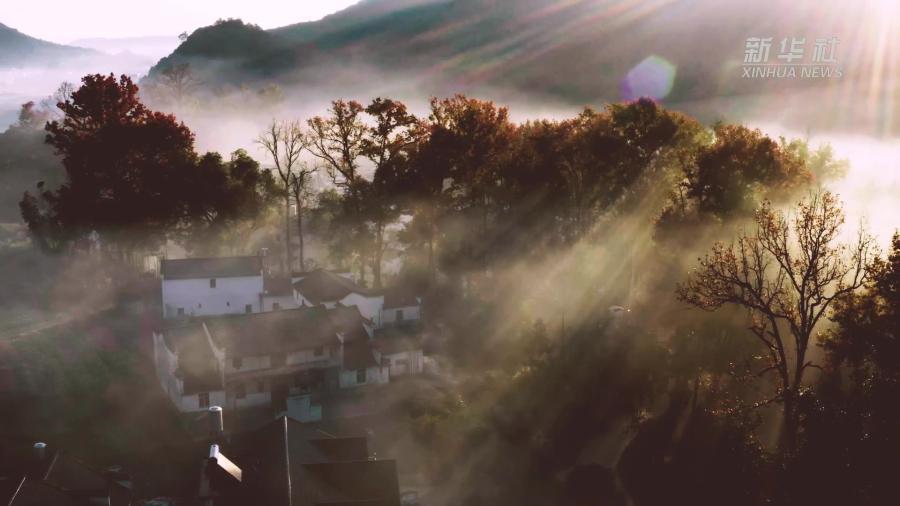 江西婺源:紅楓晨霧繞山村