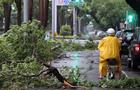 台湾一周侃:比台风更无情的是政客