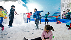 首屆中國冰雪大會在京開幕