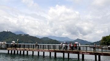 臺灣輿論:應加強檢疫解決出口大陸菠蘿蟲害問題