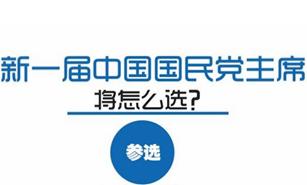 新一屆中國國民黨主席將怎麼選?