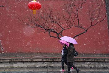 北京迎來春雪