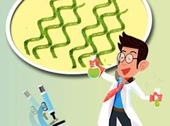 圖説螺旋藻的營養價值