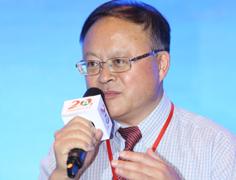 绿A公司总经理胡志祥在高峰对话发言