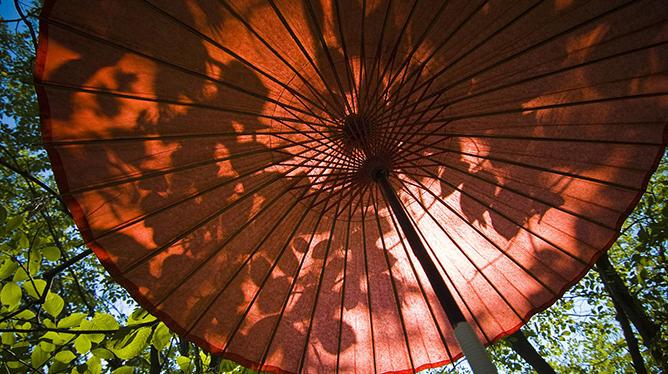 【新華圖視】即將消失的老手藝——油紙傘