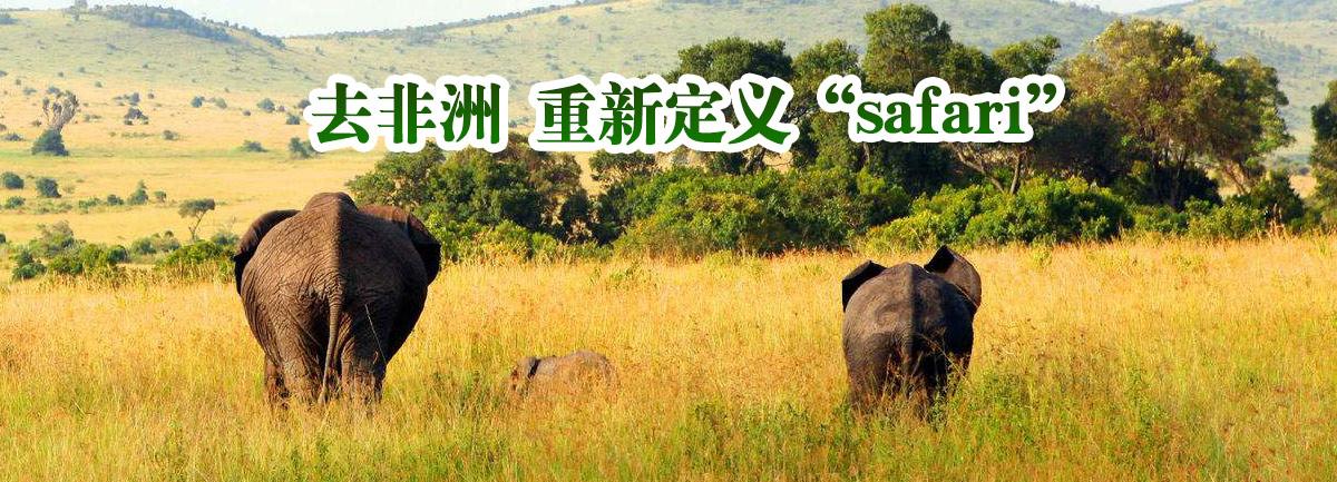 """【新華微視評】去非洲 重新定義""""safari"""""""