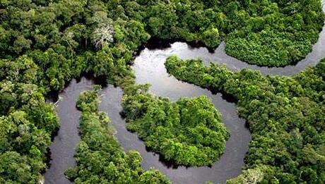 秘魯擬巨額投資保護亞馬孫雨林