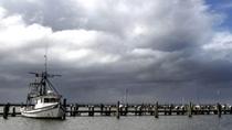 """美國:熱帶風暴""""巴裏""""將襲路易斯安那州"""