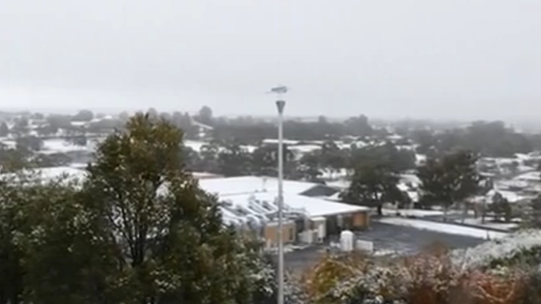 澳大利亞迎冬雪