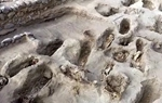 秘魯挖出孩童骸骨