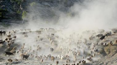 生態中國·壯美山河瞰新疆