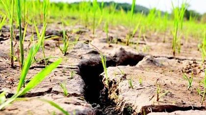 長江中下遊等地氣象幹旱持續發展