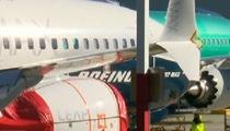 美國:美航空再次延長停飛波音737MAX