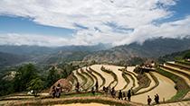 世界糧食日丨五谷豐登!來雲南看特色農事節日