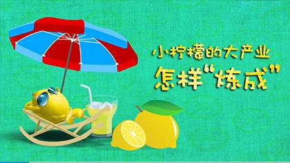 """【MG動畫】小檸檬的大産業怎樣""""煉成""""?"""