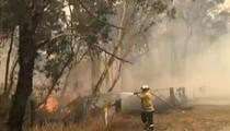 澳大利亞:高溫幹旱持續 山火難以控制