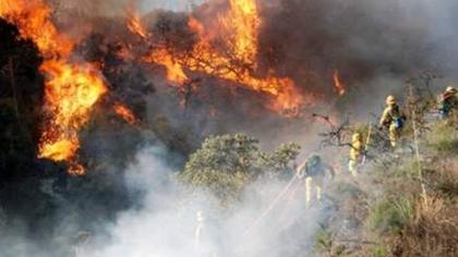 澳大利亞山火持續 悉尼地標建築被濃煙吞噬