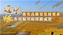 遼寧落實高質量發展要求 鄉村振興取得新成效