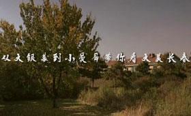 像素吉林:從大銀幕到小熒屏 帶你看大美長春