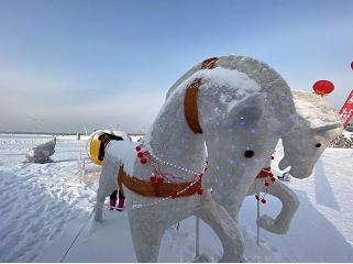 冬趣:玩轉哈爾濱——這些冰雪項目你玩兒過嗎?