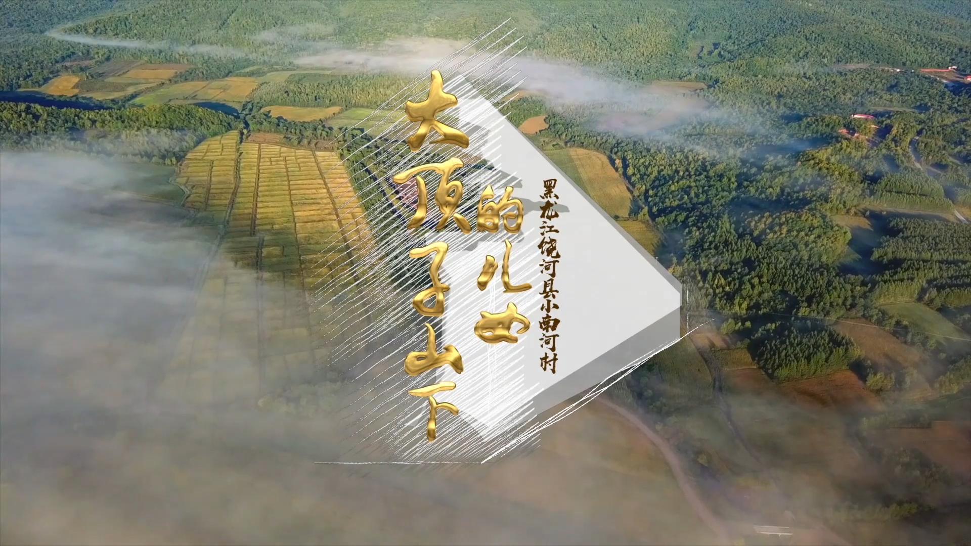 黑龍江小南河村《大頂子山下的兒女》