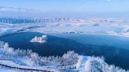 """新疆:""""蝶湖""""上現樹狀冰紋 宛若水墨畫"""