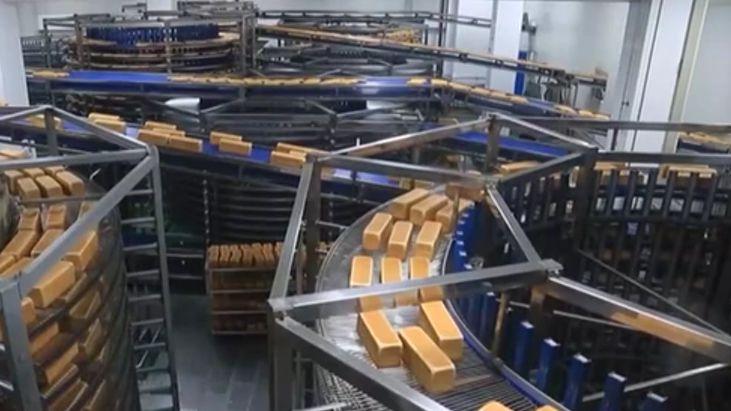 黑龍江:開設服務專班 為中小企業解困