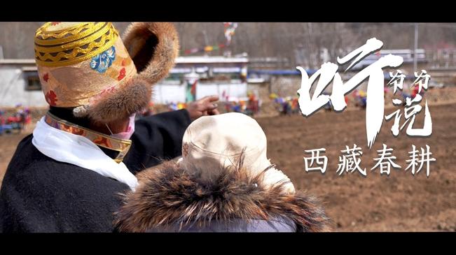 聽爺爺説 | 西藏春耕