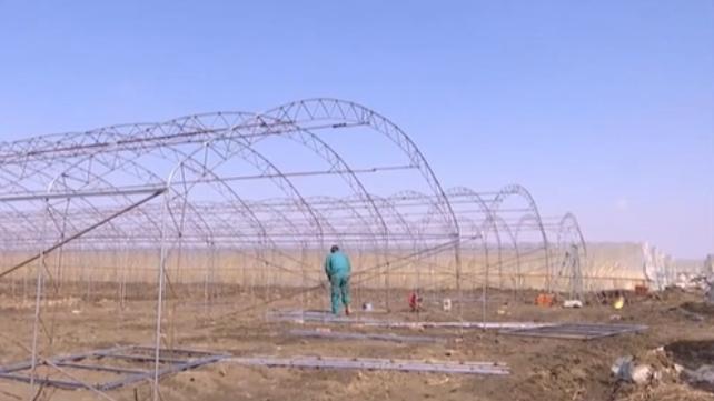 遼寧:備耕進入倒計時 多措並舉搶抓農時