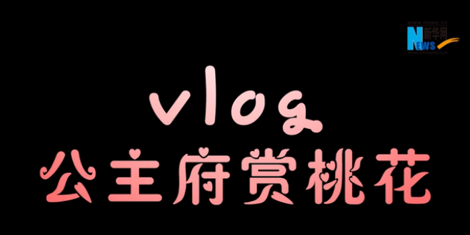 vlog:公主府賞桃花